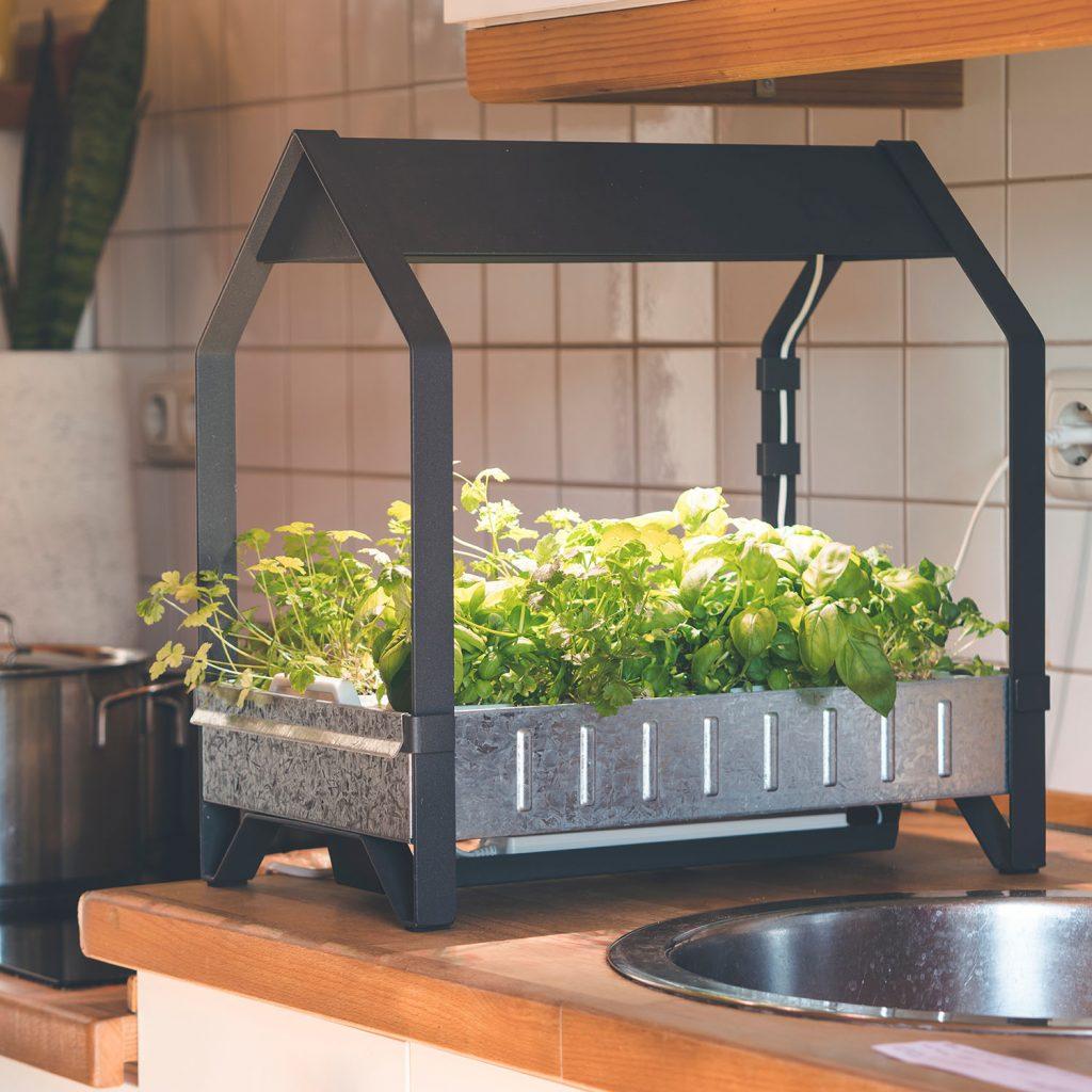 benefits-of-hydroponics