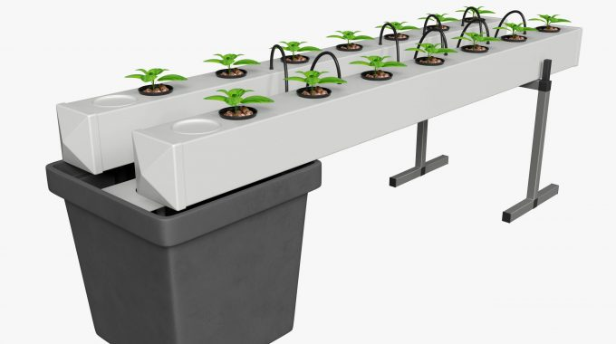 Hydroponics Illustration