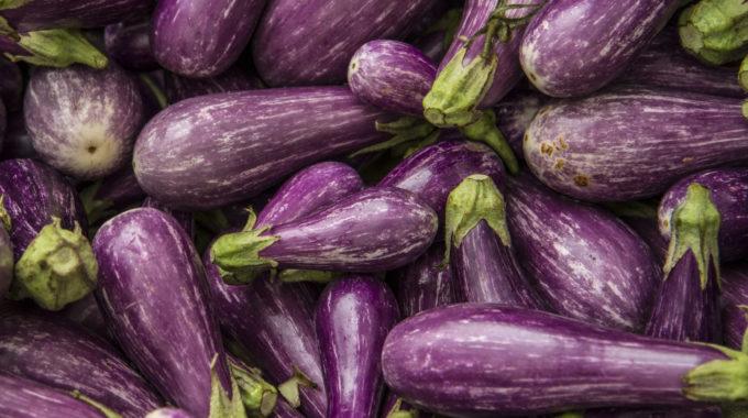 Fairy Tale Eggplant